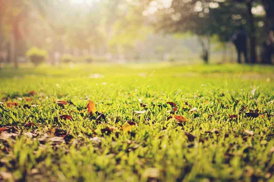 Comment installer un sol en linoléum