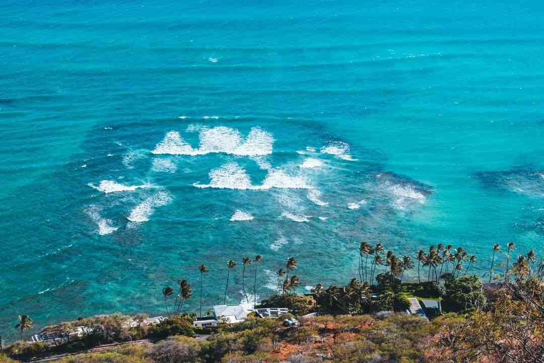 Spa Honolulu Air Jet 4-6p : Avis, Tarif, Prix 2021